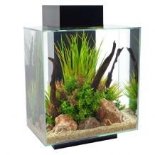 Fluval Edge Fish Tank 46 Litre Gloss Black